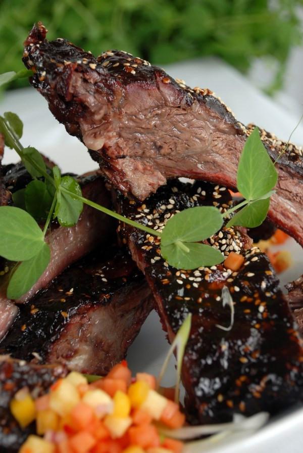 Alton Brown Smoked Salmon  36 Backyard Smoker Recipes