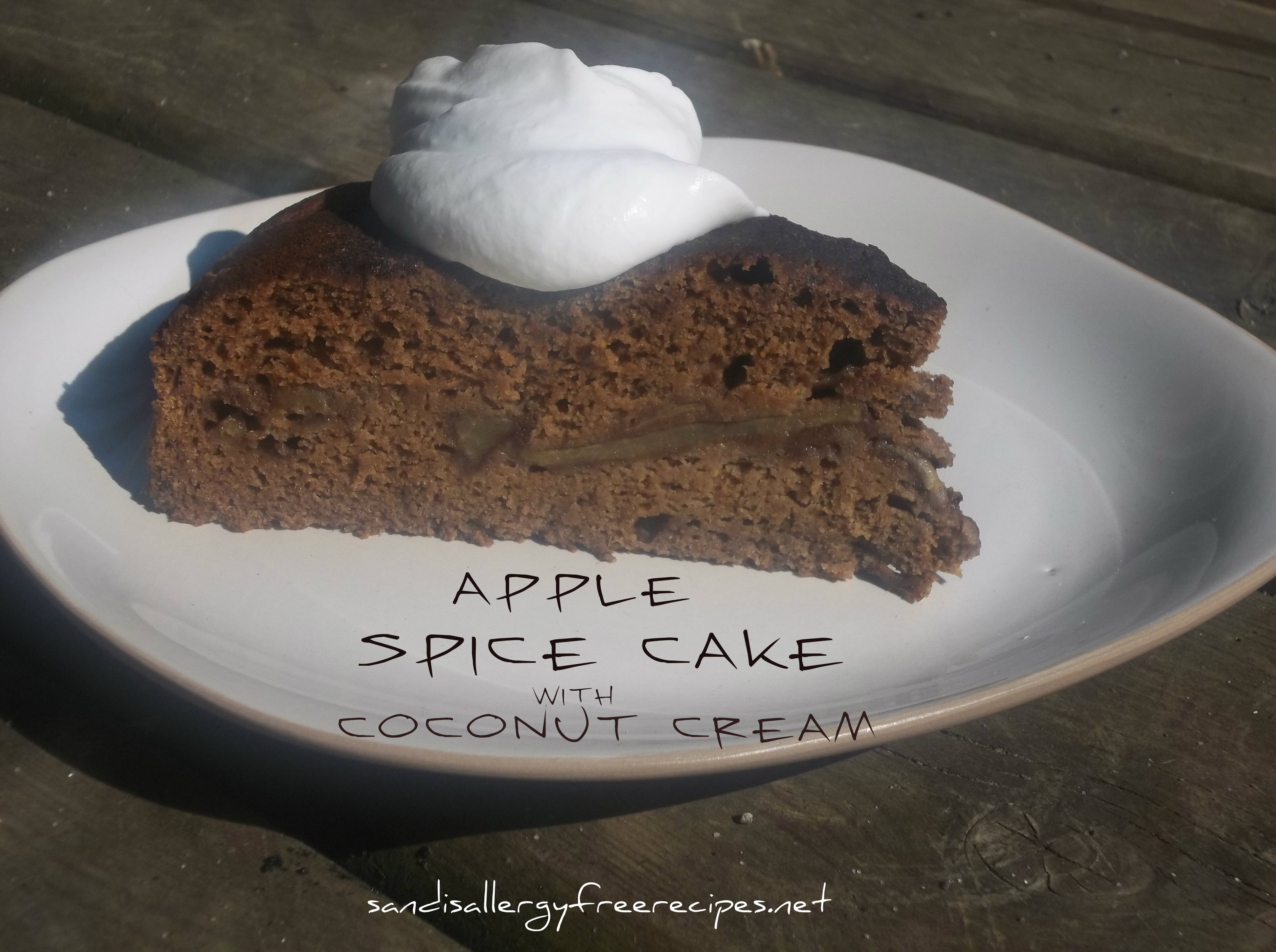 Apple Spice Cake  Apple Spice Cake Gluten Free Dairy Free Refined Sugar