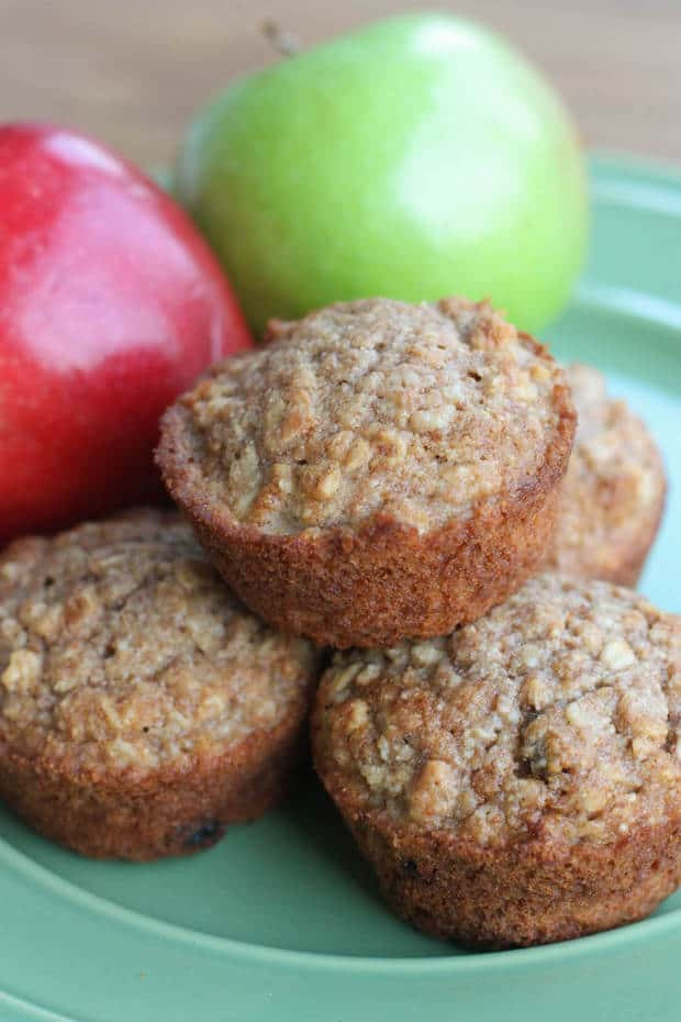 Applesauce Oatmeal Muffins  Healthy Applesauce Oat Muffins The Best Blog Recipes
