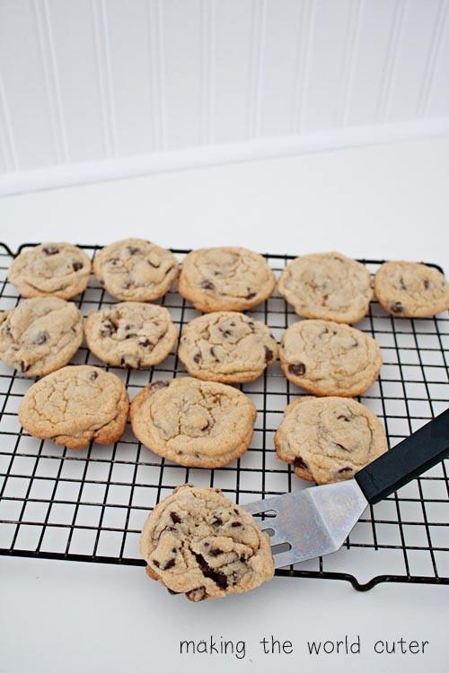 Basic Chocolate Chip Cookies  Basic Chocolate Chip Cookie Recipe