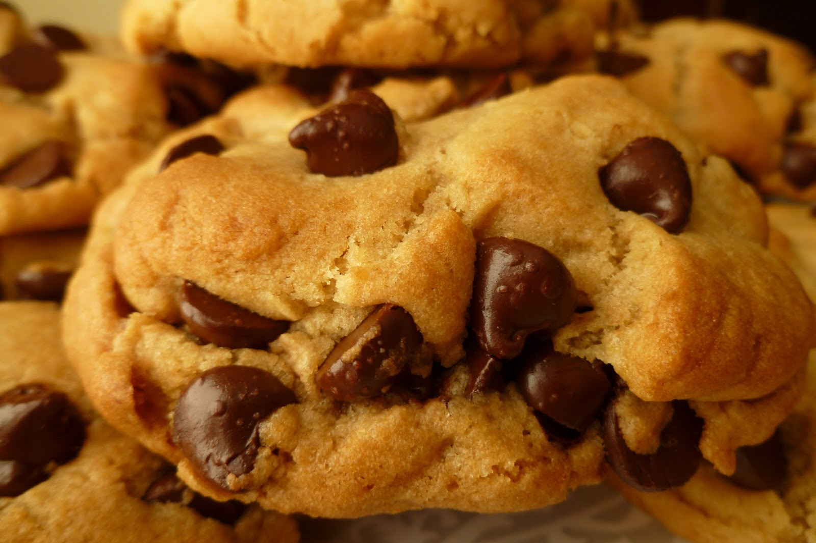 Basic Chocolate Chip Cookies  The Pastry Chef s Baking Basic Great Chocolate Chip