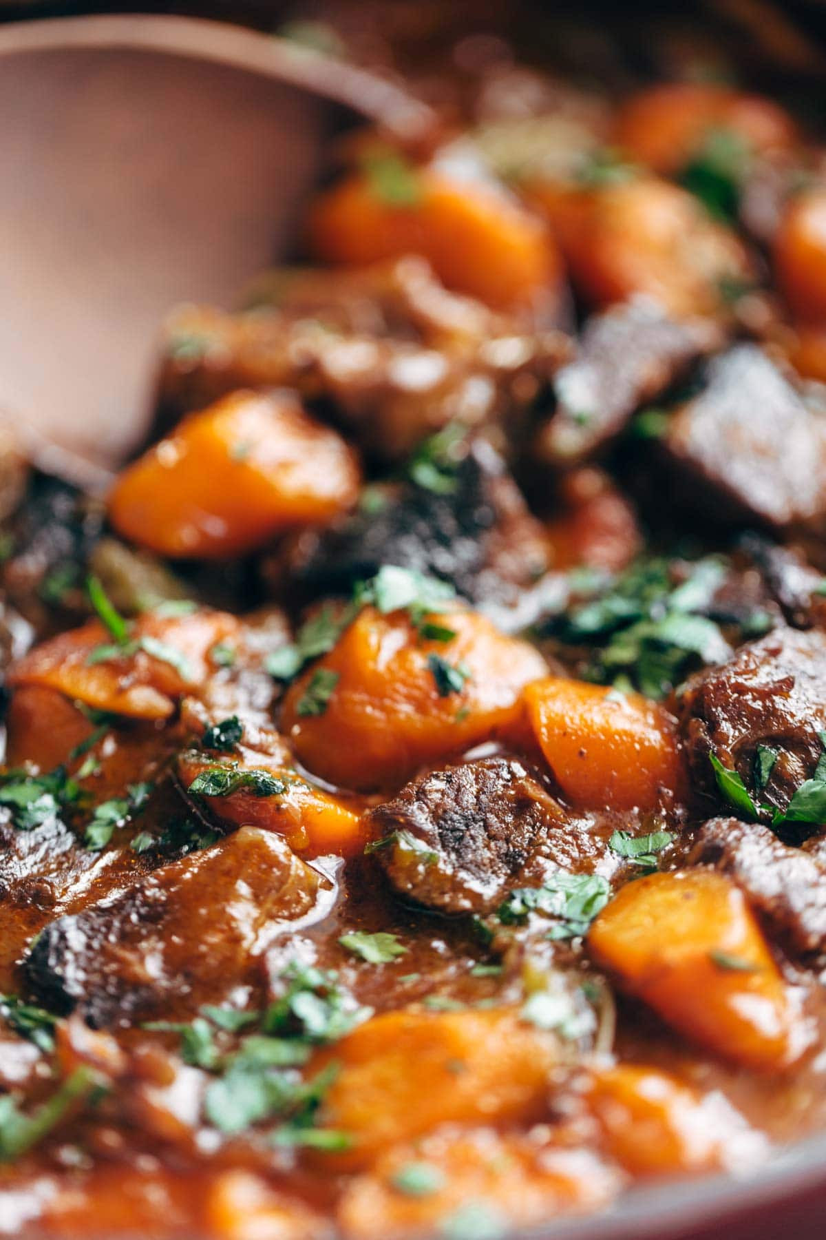Beef Stew Instant Pot Recipe  Life Changing Instant Pot Beef Stew Recipe Pinch of Yum