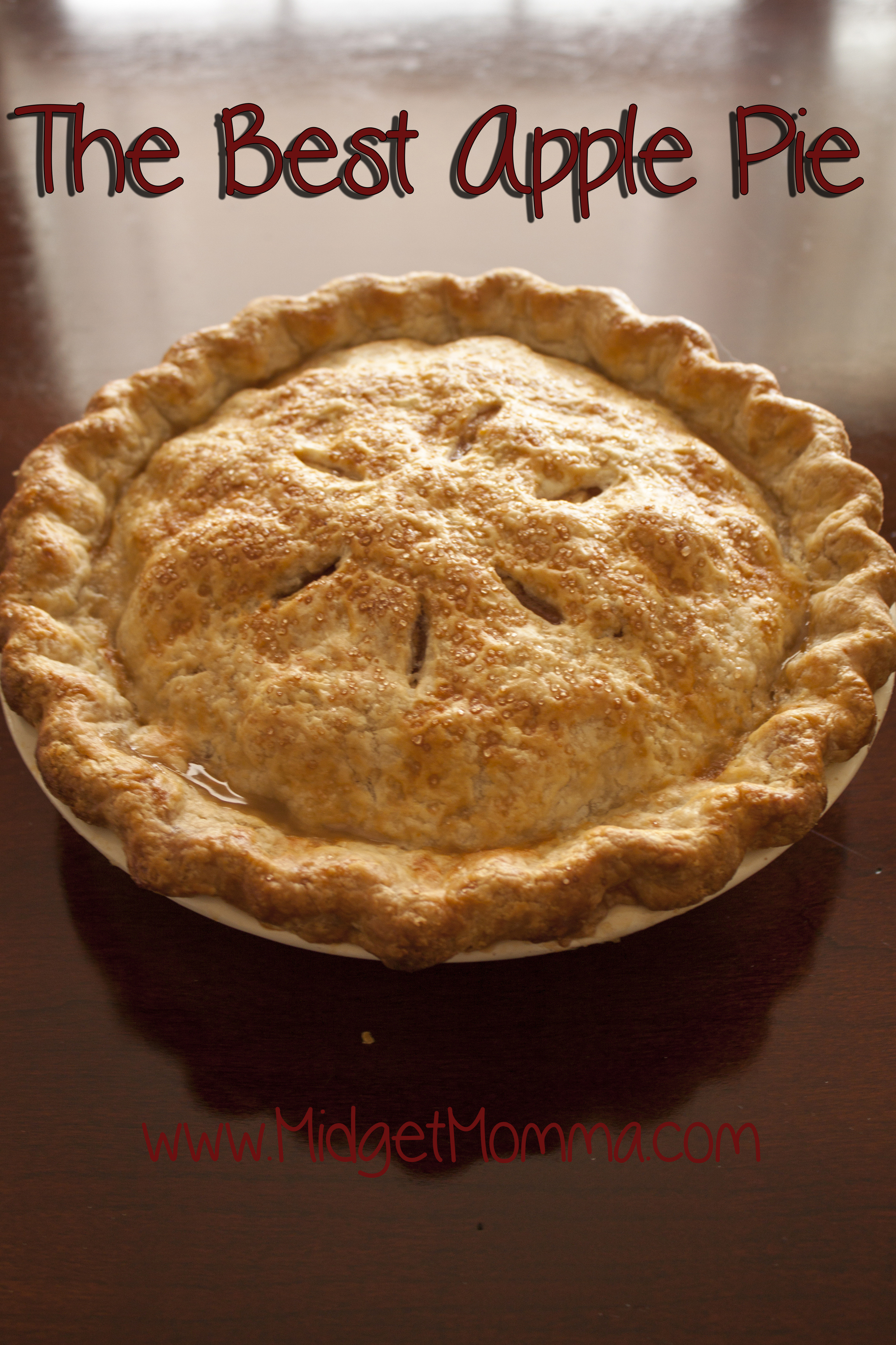 Best Apple Pie  The Best Apple Pie Easy Apple Pie Recipe