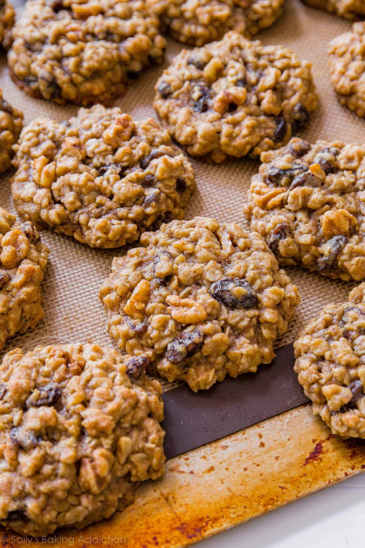 Best Chewy Oatmeal Cookies  chewy oatmeal raisin cookies with molasses