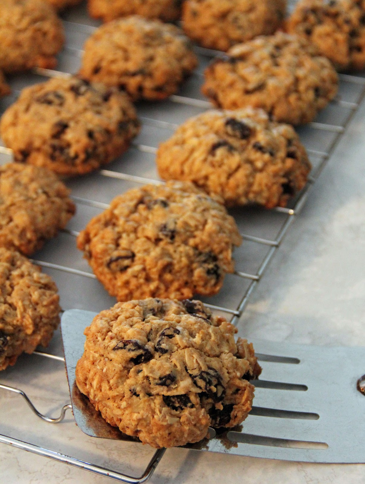 Best Chewy Oatmeal Cookies  Jo and Sue Chewy Oatmeal Raisin Cookies