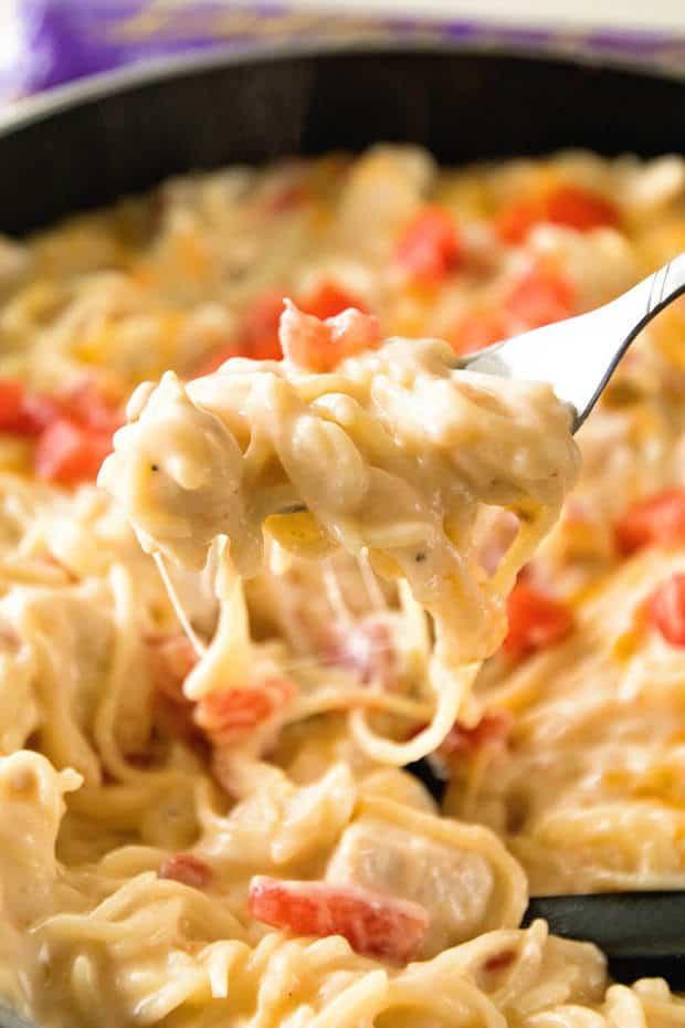 Best Chicken Spaghetti Recipe  Best Spaghetti Recipes The Best Blog Recipes