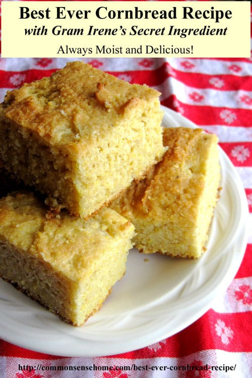 Best Cornbread Recipe  Best Ever Cornbread Recipes Northern and Southern Style