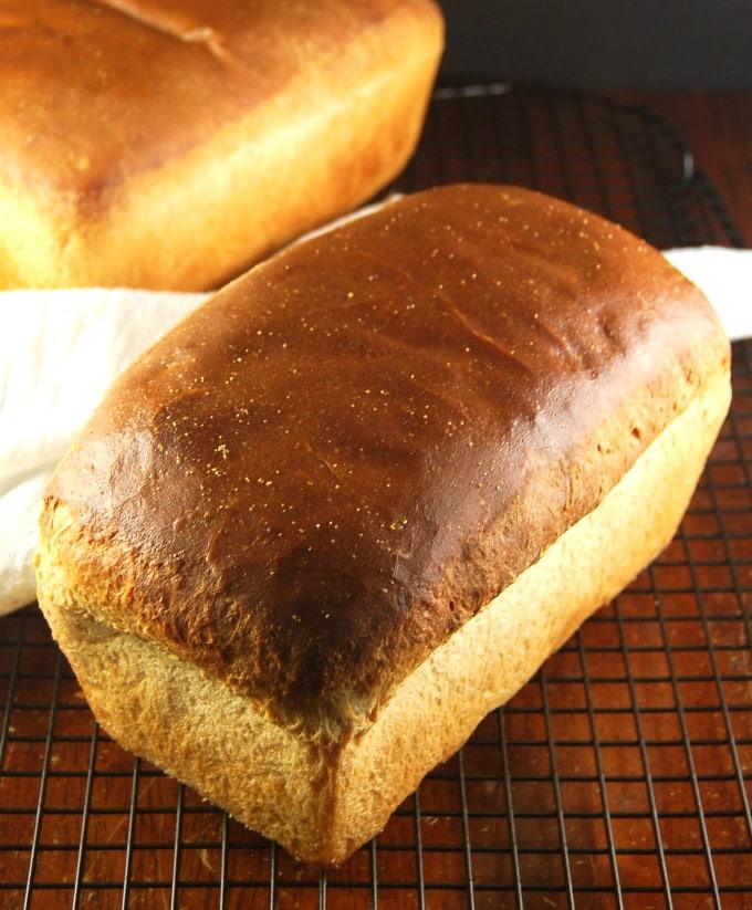 Bread Recipe No Yeast  sourdough sandwich bread no yeast