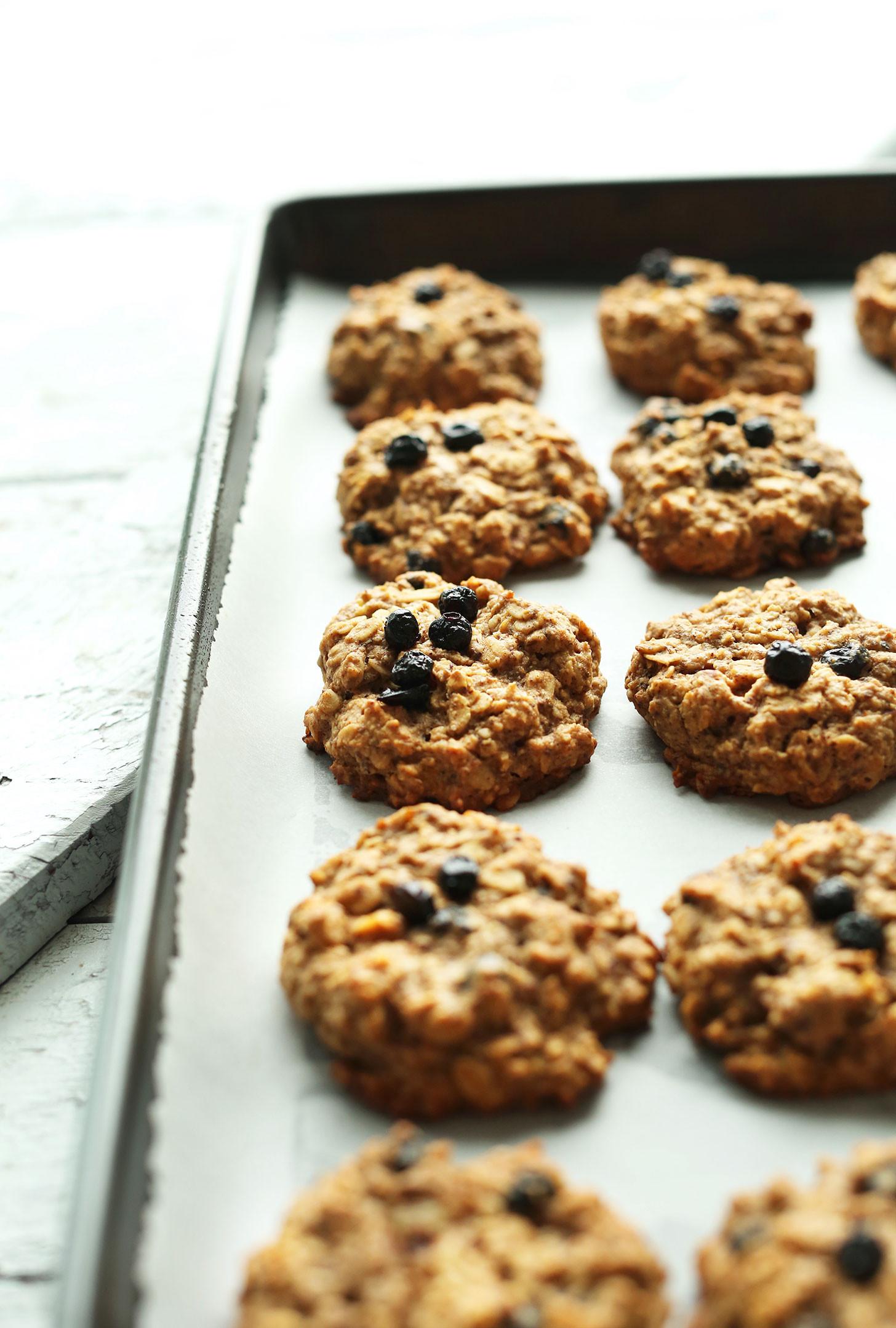 Breakfast Cookie Recipes  healthy breakfast cookies recipe