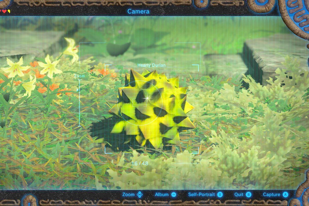 Breath Of The Wild Fruitcake  Zelda Breath of the Wild's easiest way to gain hearts