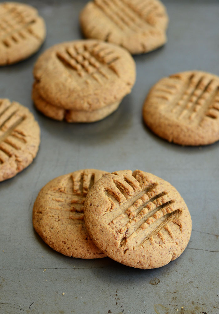 Butter Substitute Cookies  how to substitute pb2 for peanut butter in baking