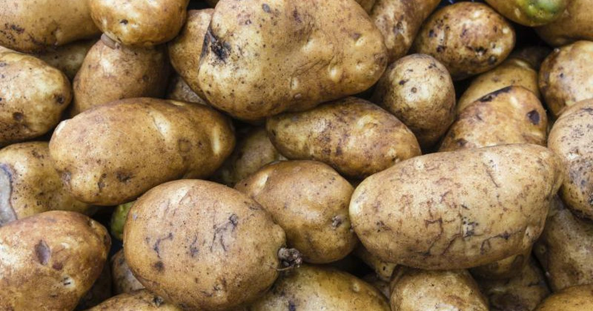 Calories In Medium Potato  How to Roast Russet Potatoes
