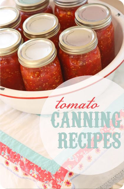 Canning Spaghetti Sauce  best recipe for canned spaghetti sauce