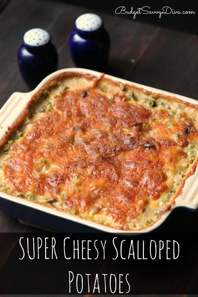 Cheesy Scalloped Potatoes Recipe  SUPER Cheesy Scalloped Potatoes Recipe