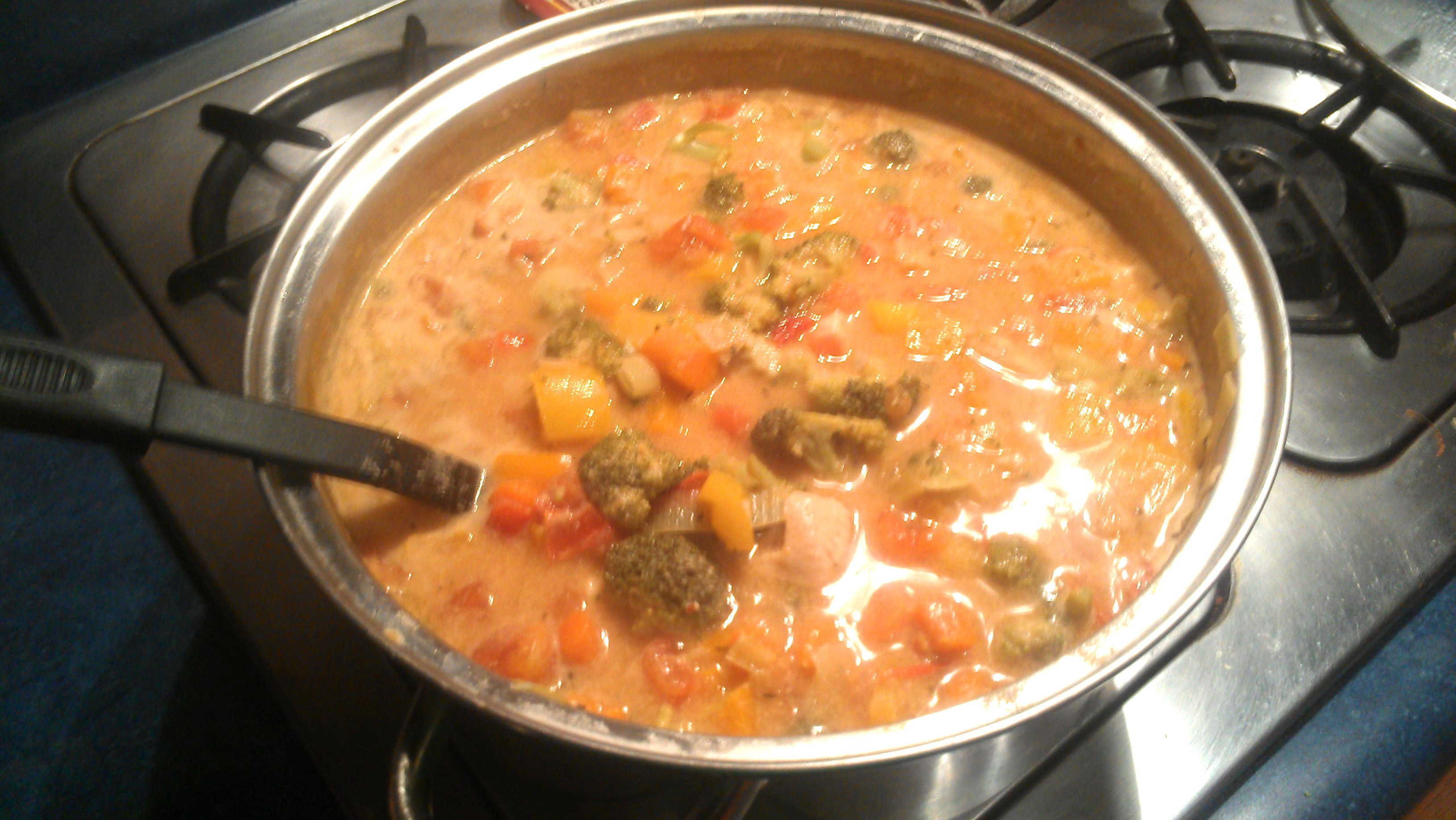 Chicken Vegetable Stew  chicken ve able stew