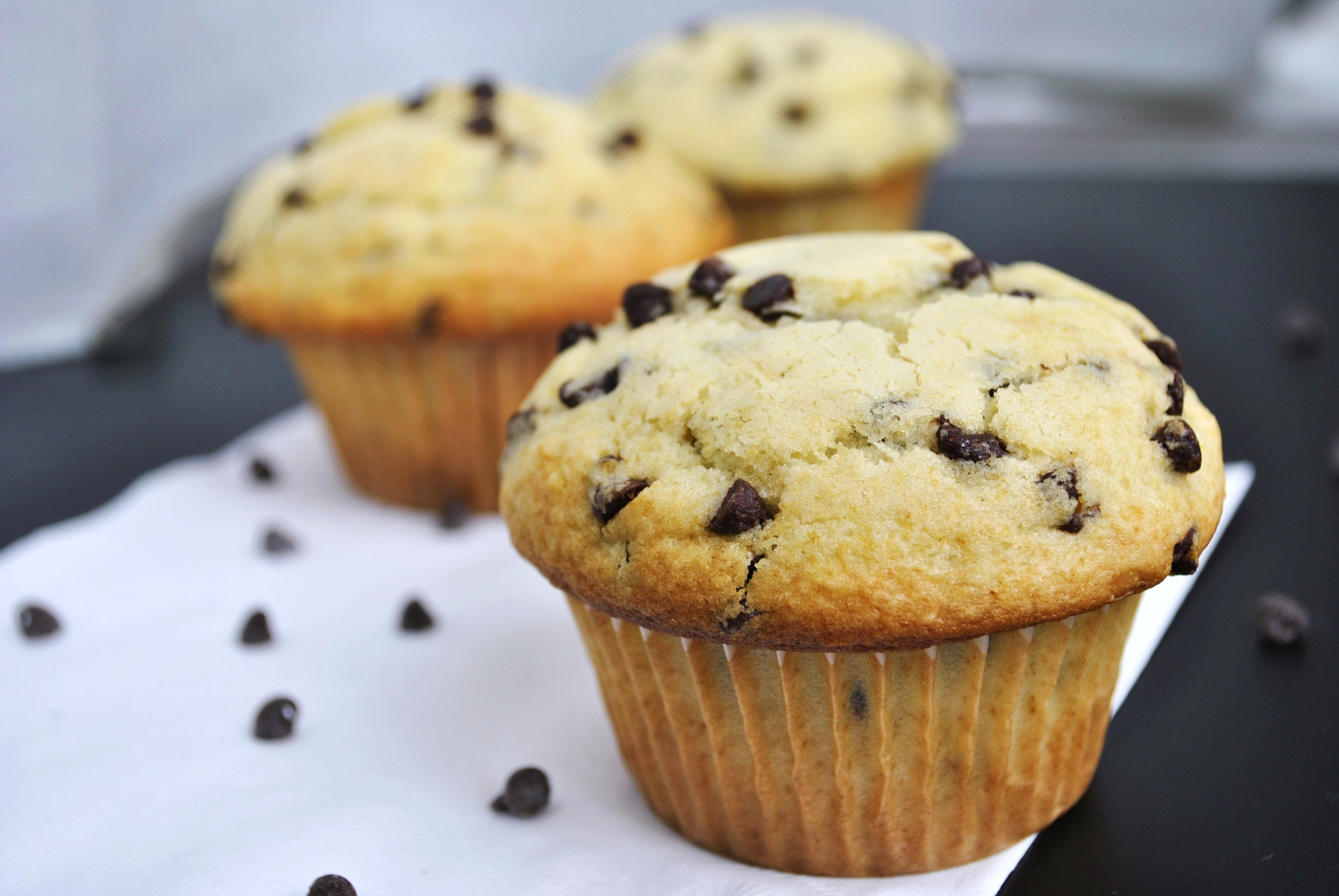 Chocolate Chip Muffins  Chocolate Chip Muffins – Go Eat and Repeat