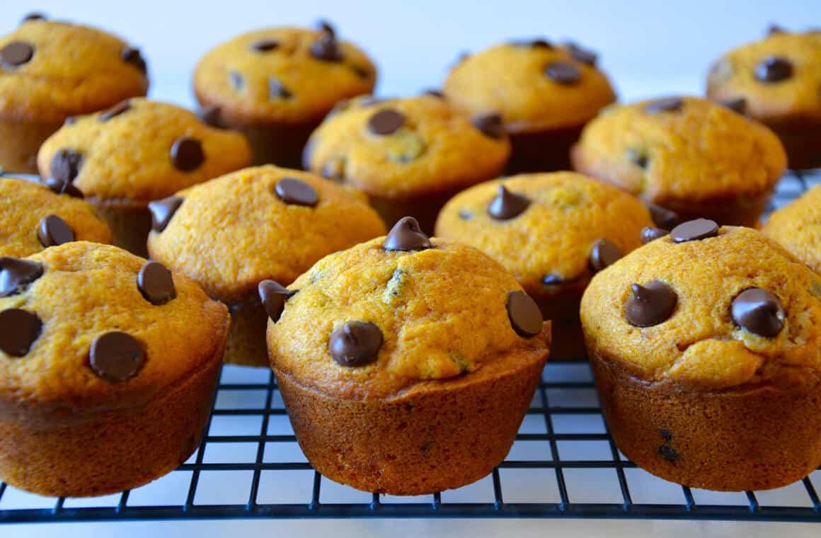 Chocolate Chip Muffins  The Best Pumpkin Chocolate Chip Muffins