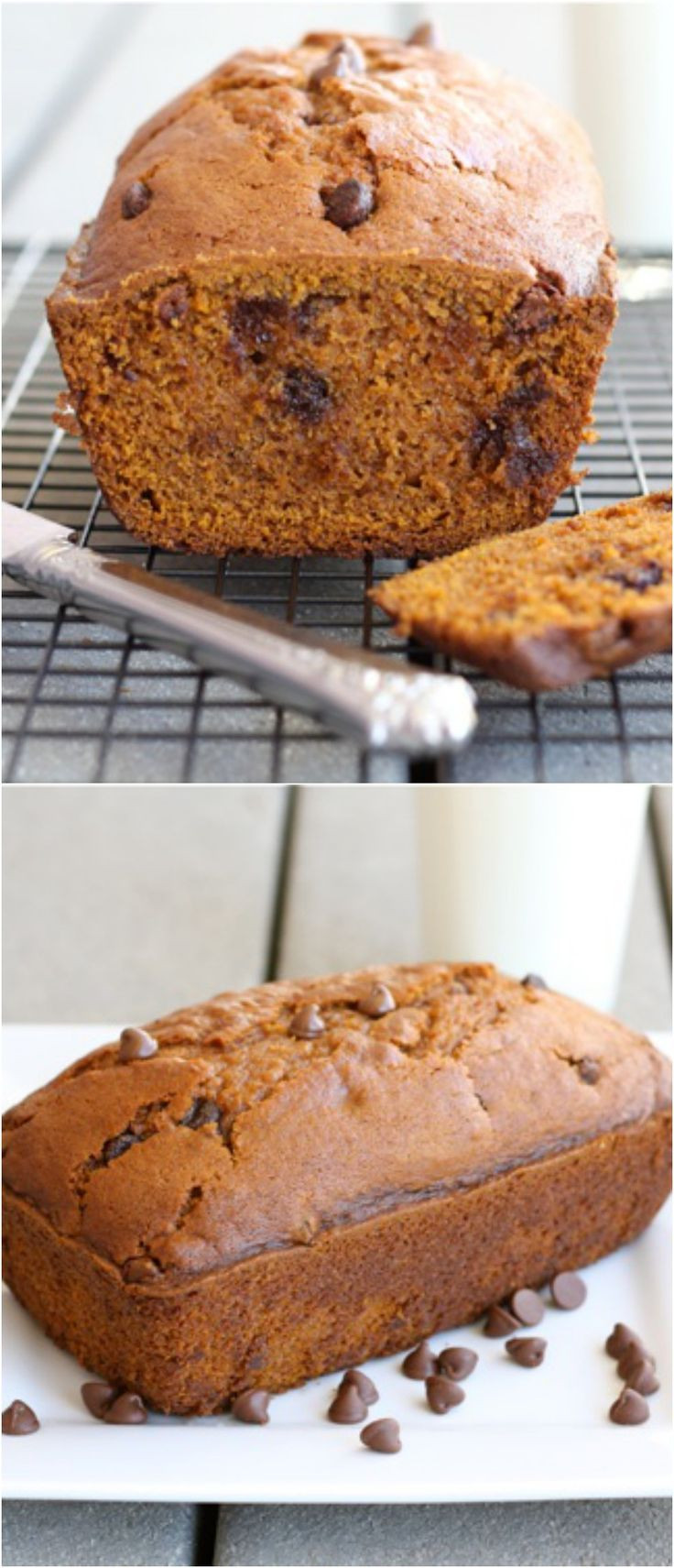 Chocolate Pumpkin Bread  The BEST Pumpkin Chocolate Chip Bread Recipe on