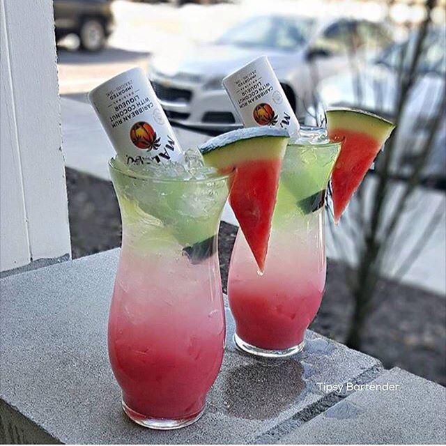 Coconut Rum Drinks  WATERMELON SURPRISE Watermelon Mixer Lemonade Malibu