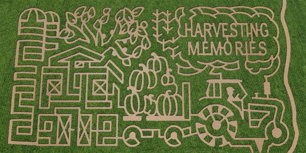 Corn Maze Indiana  Guse Corn Maze Wanatah IN s & Videos