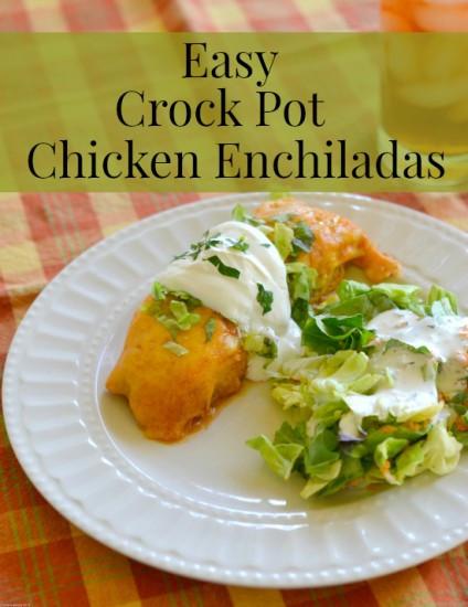 Crock Pot Chicken Enchiladas  Easy Crock Pot Chicken Enchiladas Flour My Face