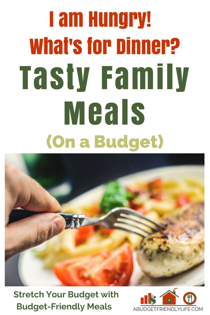 Dinner On A Budget  173 best A Bud Friendly Life images on Pinterest