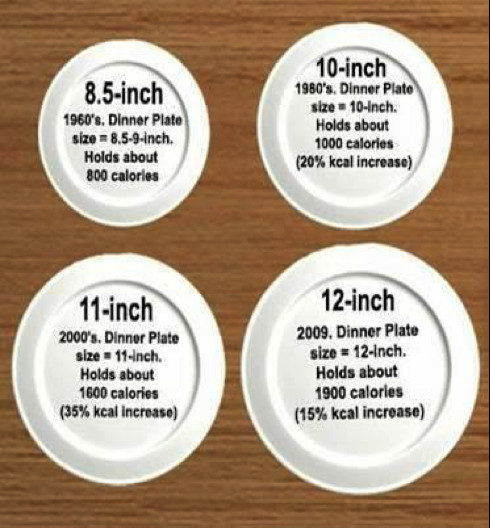 Dinner Plates Sizes  Family Supper Is A Win Win Tar Living