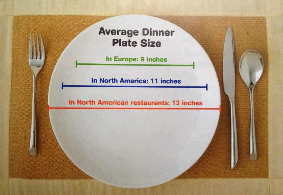 Dinner Plates Sizes  Average Dinner Plate Size
