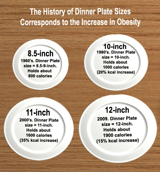 Dinner Plates Sizes  Dietitians line Blog Good bye Food Pyramid Hello Food