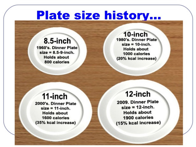 Dinner Plates Sizes  Let's Talk About Portion Control – Live Laugh love And Lose