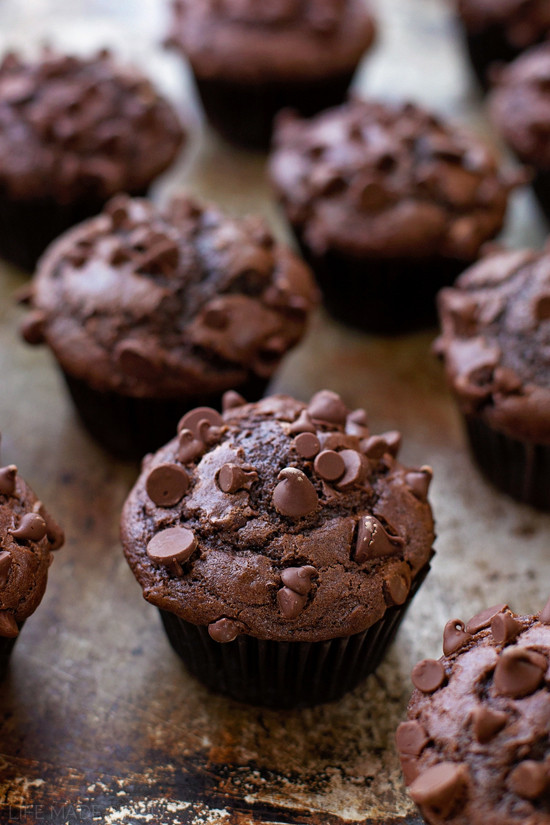 Double Chocolate Chip Muffins  Double Chocolate Muffins Life Made Simple