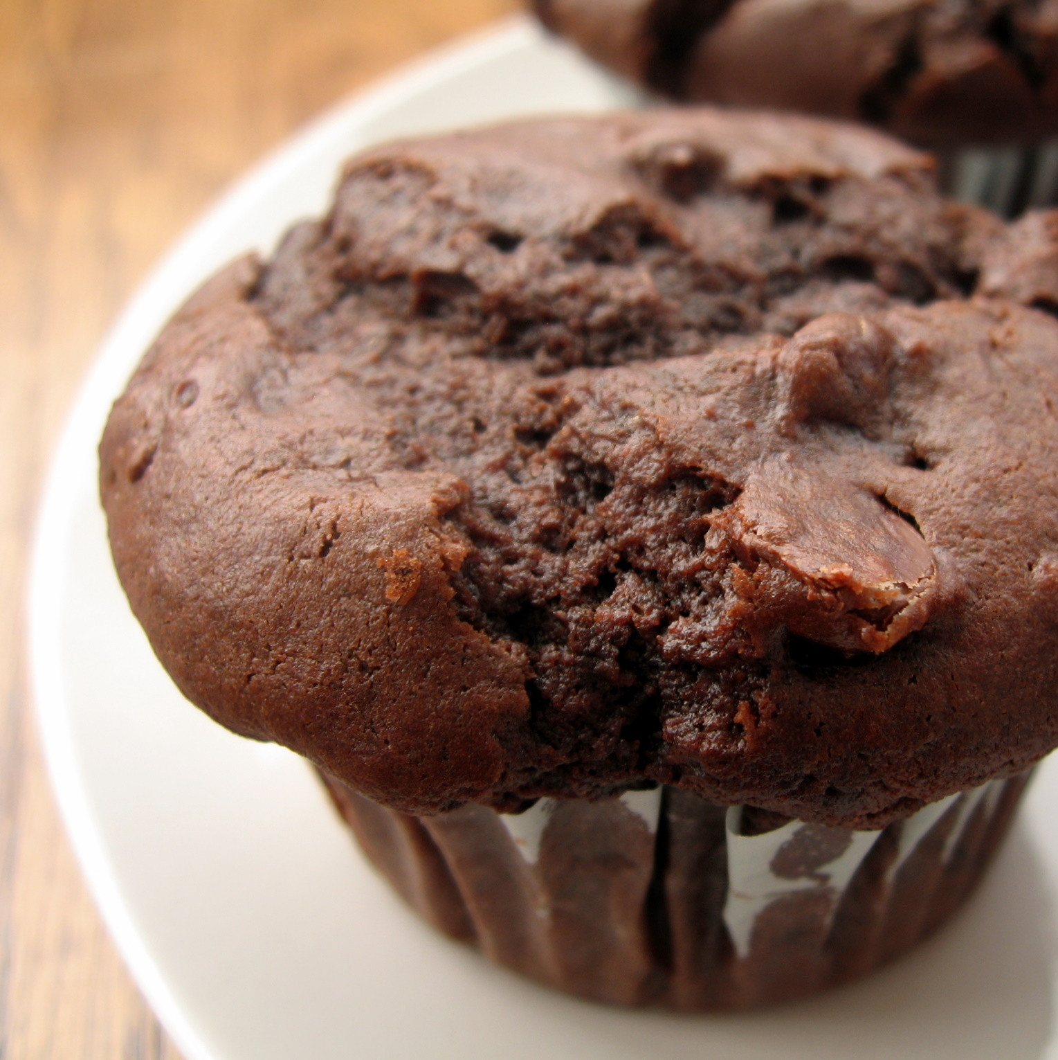 Double Chocolate Chip Muffins  the nonpareil baker Double Chocolate Chip Muffins