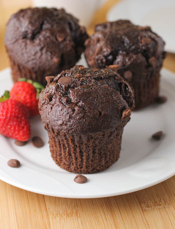 Double Chocolate Chip Muffins  Double Chocolate Chip Muffins