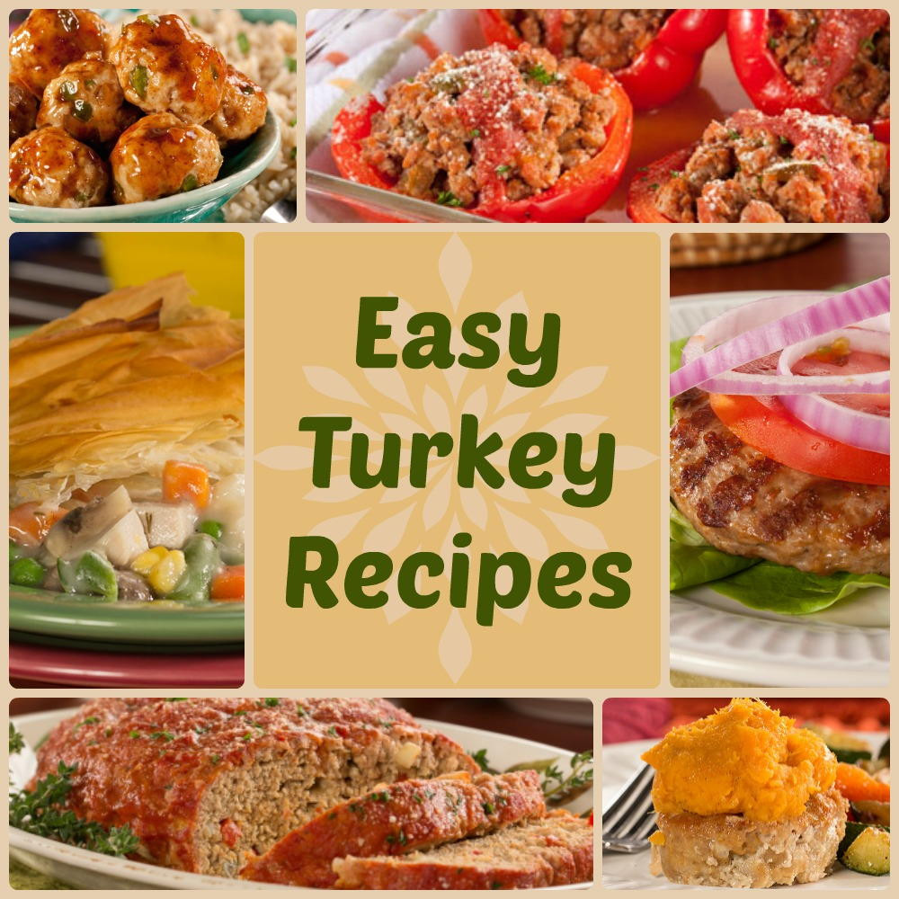 Easy Dinner Recipe  Quick & Healthy Dinner Recipes 18 Easy Turkey Recipes