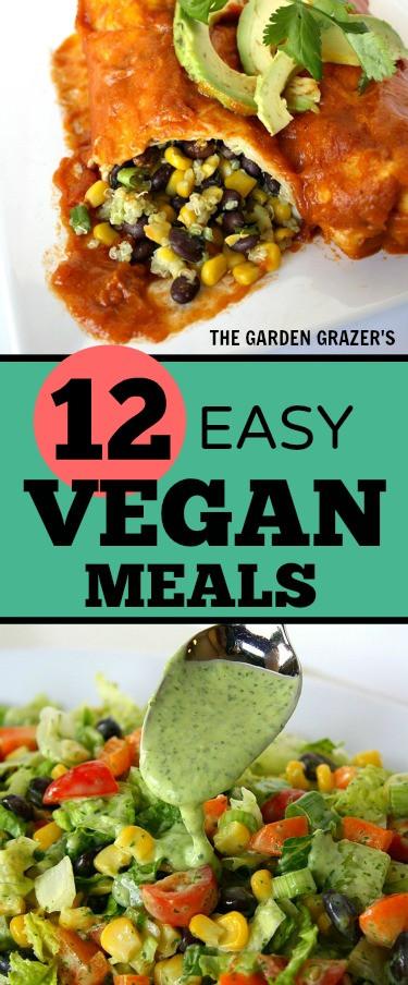 Easy Vegan Recipes For Dinner  The Garden Grazer 12 Easy Satisfying Vegan Meals