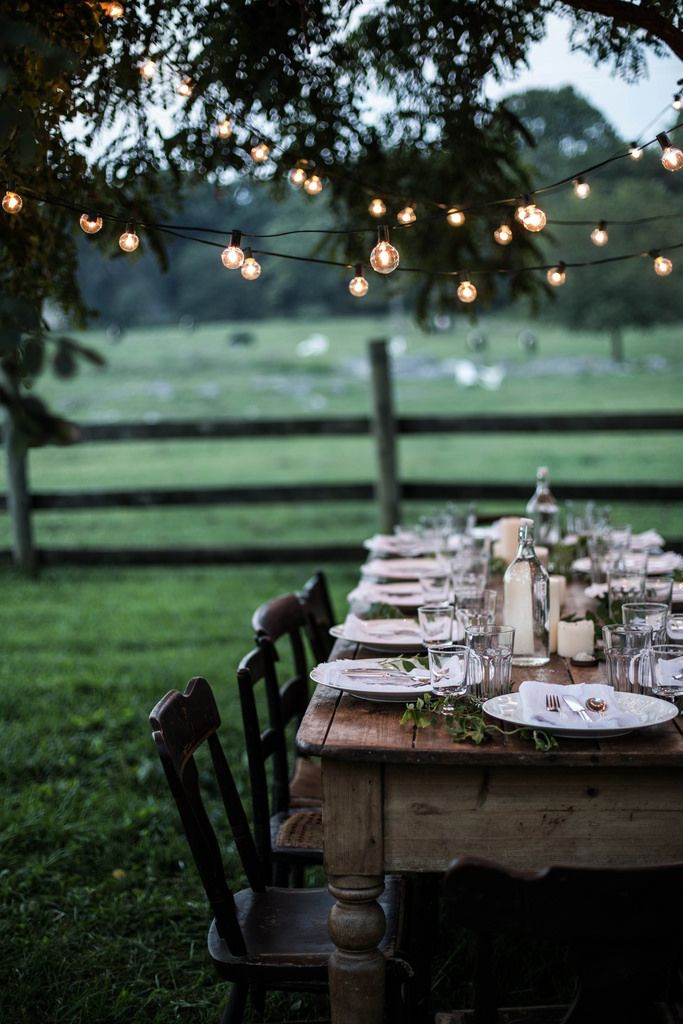 Farm To Table Dinner  Orange Dream Mimosas Recipe 8 cups chilled Champagne or