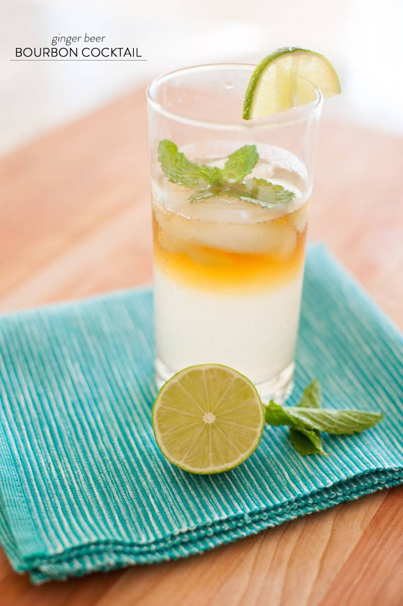 Ginger Beer Cocktails  10 Best Ginger Beer Cocktails Recipes