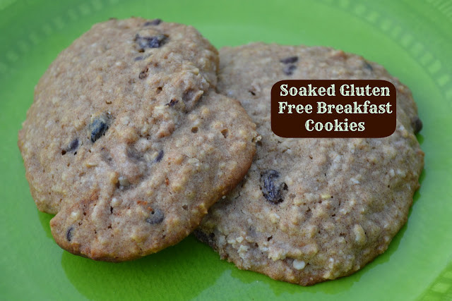 Gluten Free Breakfast Cookies  Soaked Gluten Free Breakfast Cookies Just Take A Bite