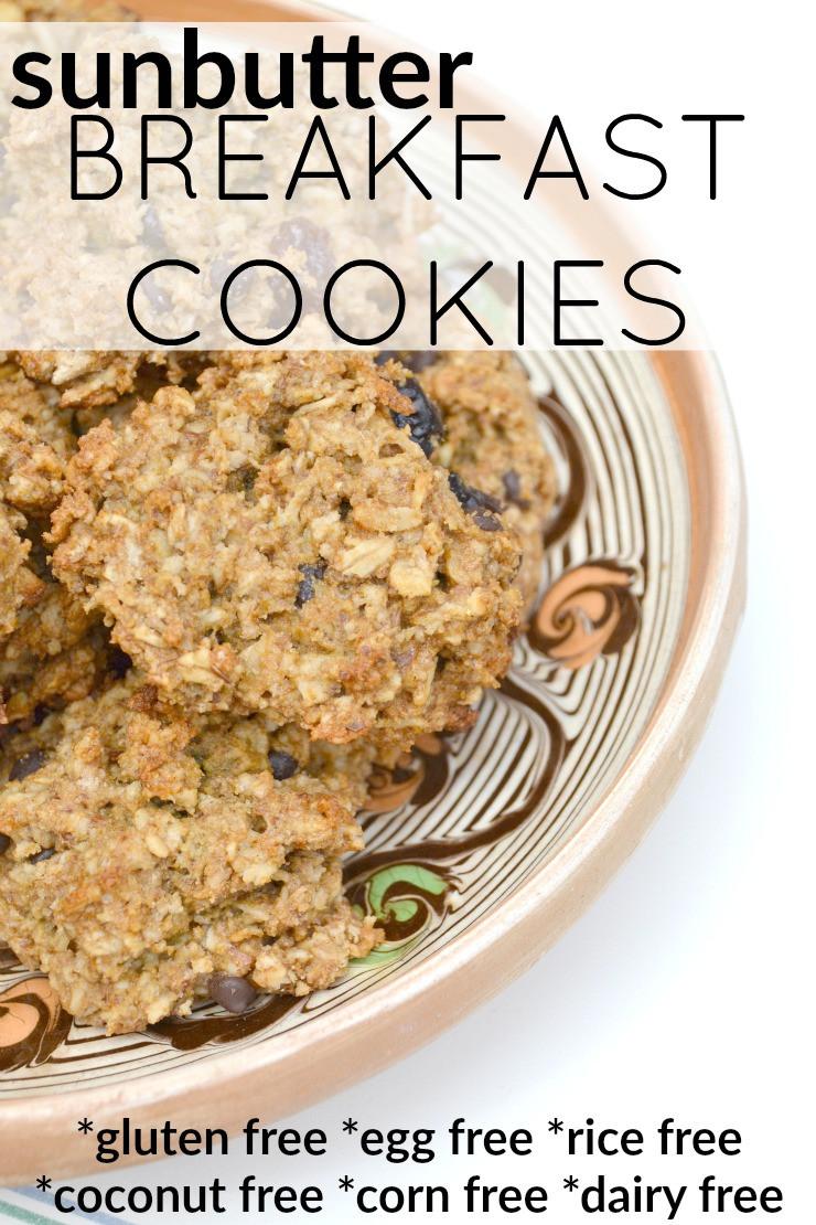 Gluten Free Breakfast Cookies  Gluten Free Sunbutter Breakfast Cookies