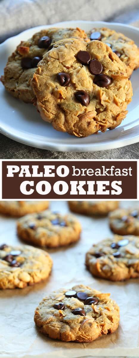 Gluten Free Breakfast Cookies  Paleo Breakfast Cookies ⋆ Great gluten free recipes for