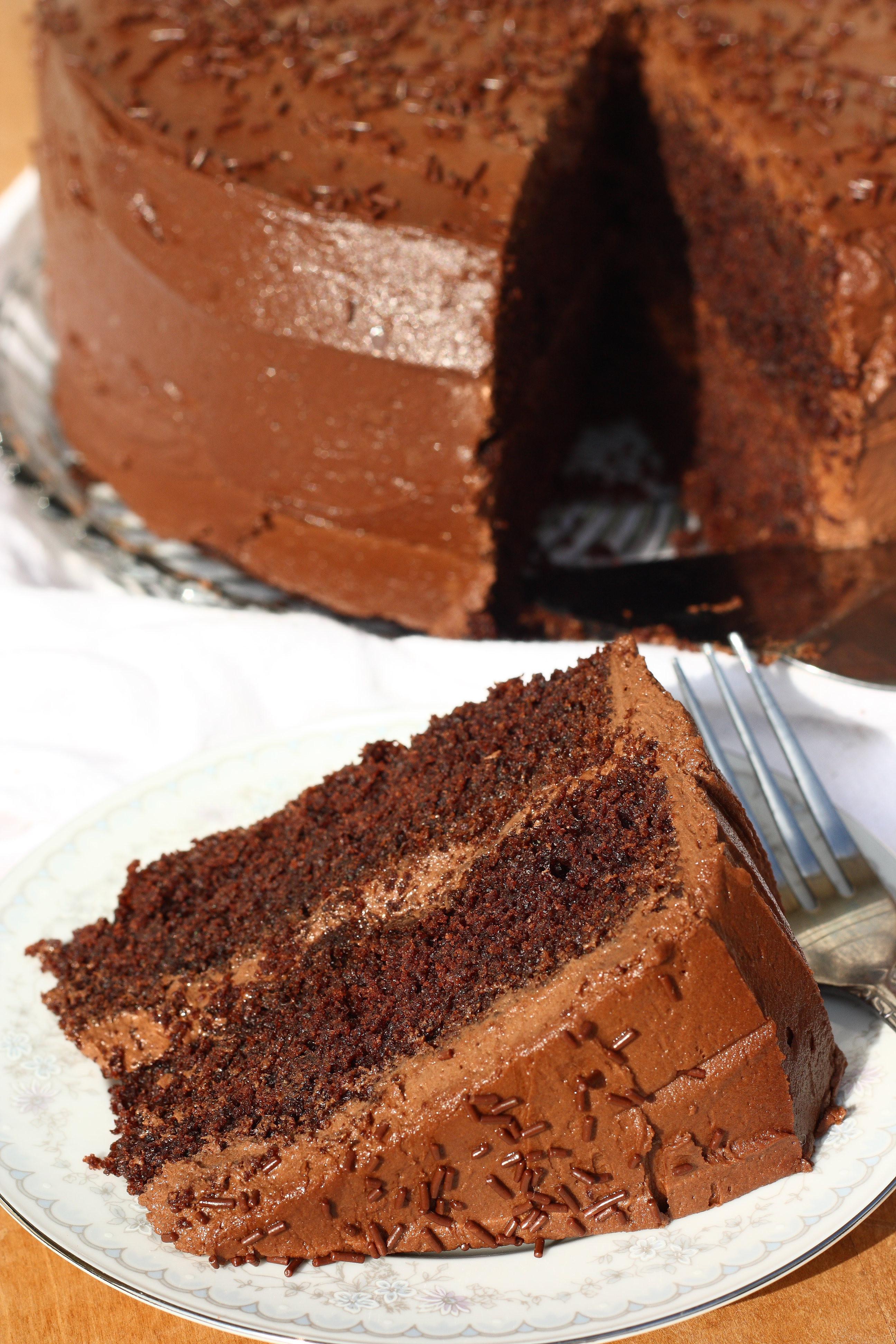 Gluten Free Chocolate Cake Recipe  Super Moist Gluten Free Chocolate Cake Recipe For Him