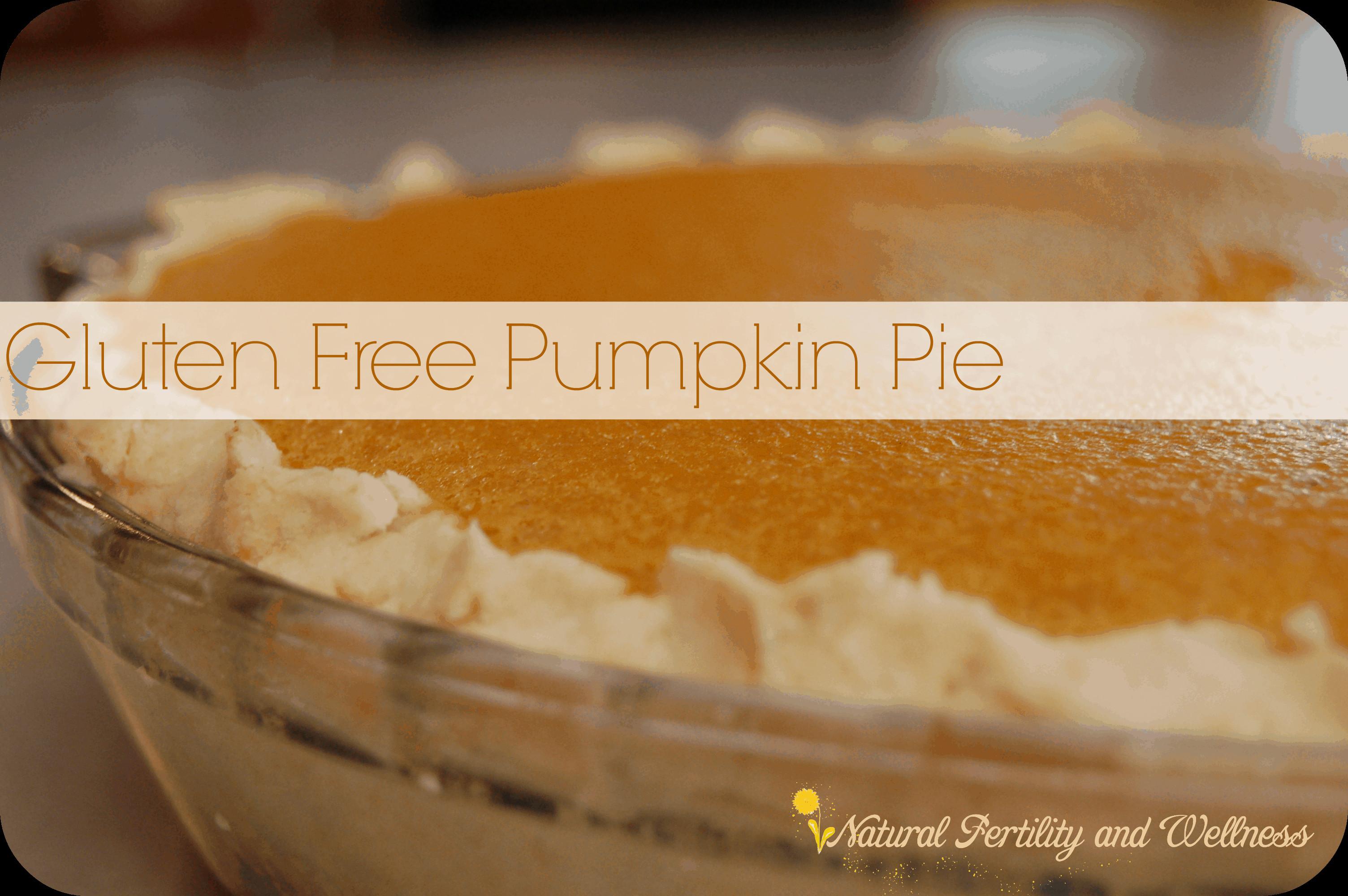Gluten Free Pumpkin Pie  Gluten free pumpkin pie