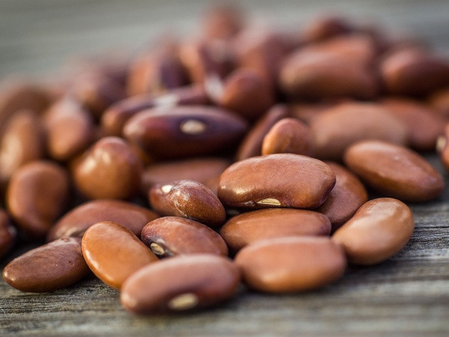 Green Bean Seeds  Texas farmer offers list of essential seeds to for