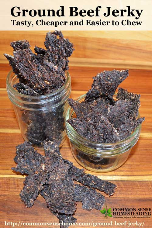 Ground Beef Jerky  11 Homemade Beef Jerky Recipes You Can Make In A Solar