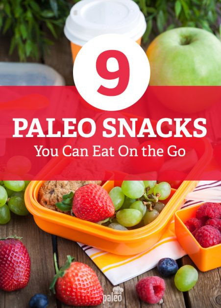 Healthy Paleo Snacks  9 Paleo Snacks You Can Eat the Go