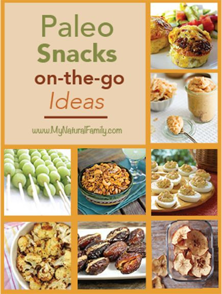 Healthy Paleo Snacks  50 Paleo Snack Recipes When the Go Healthy Can Be