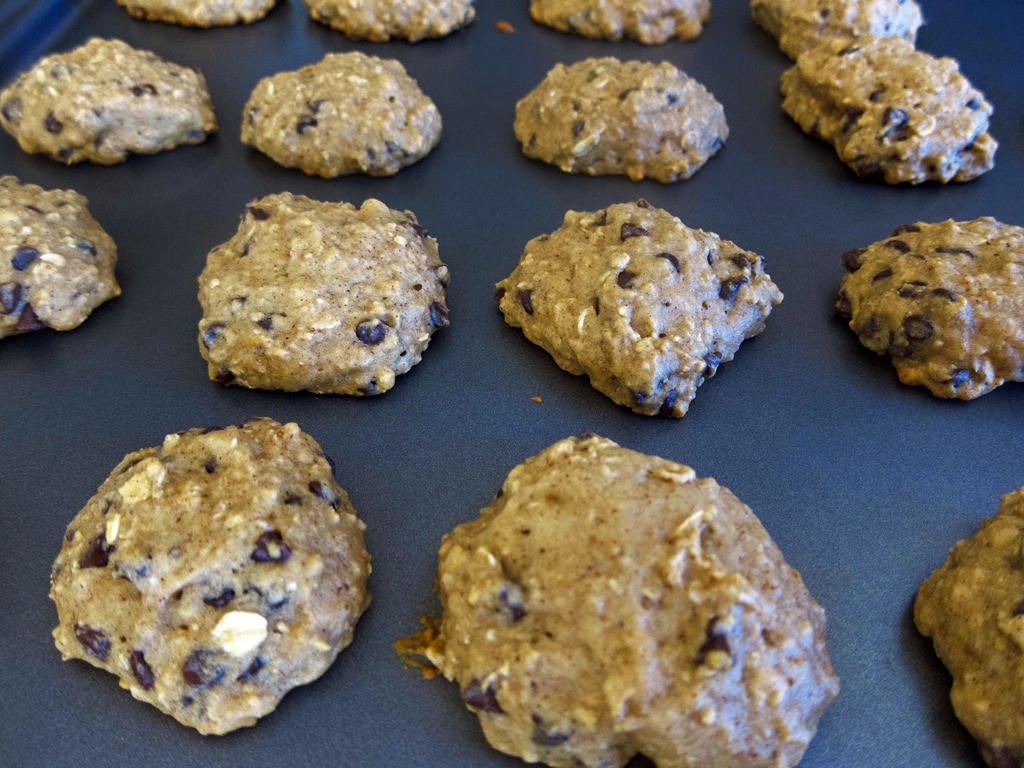 High Altitude Chocolate Chip Cookies  Tasty Treat High Altitude Chocolate Chip Cookies Recipe