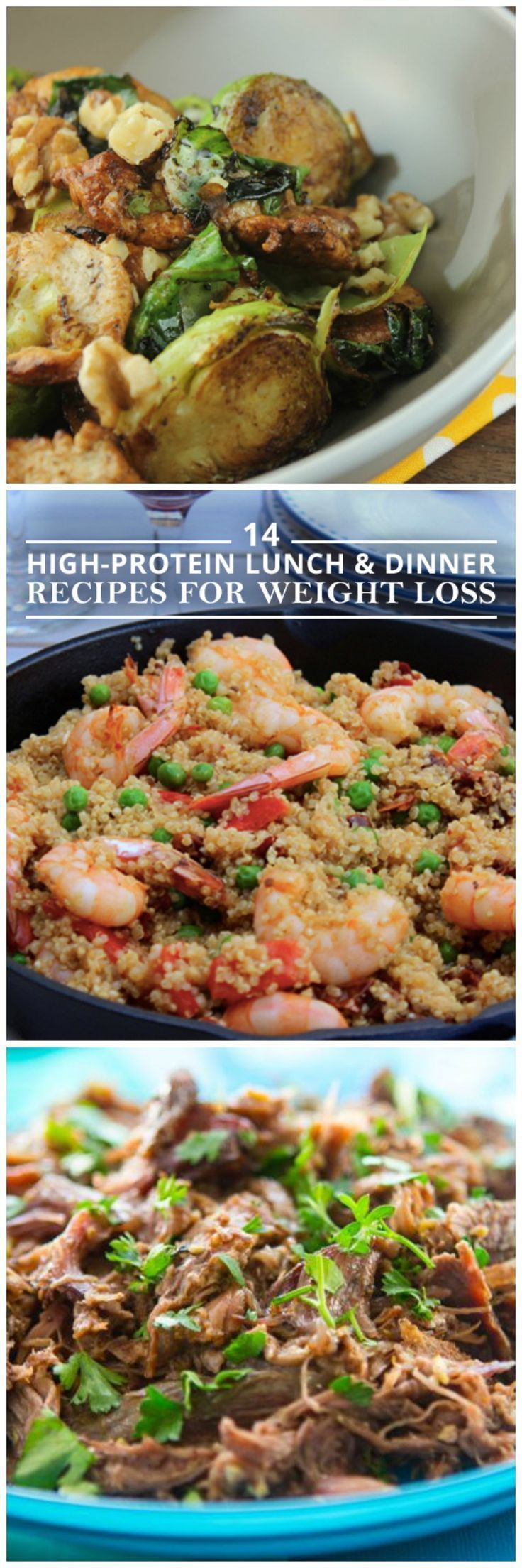 High Protein Dinner Recipes  97 best images about High Protein Low Carb Recipes on