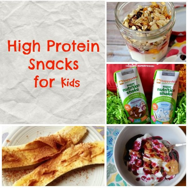 High Protein Snacks Recipes  High Protein Snacks for Kids