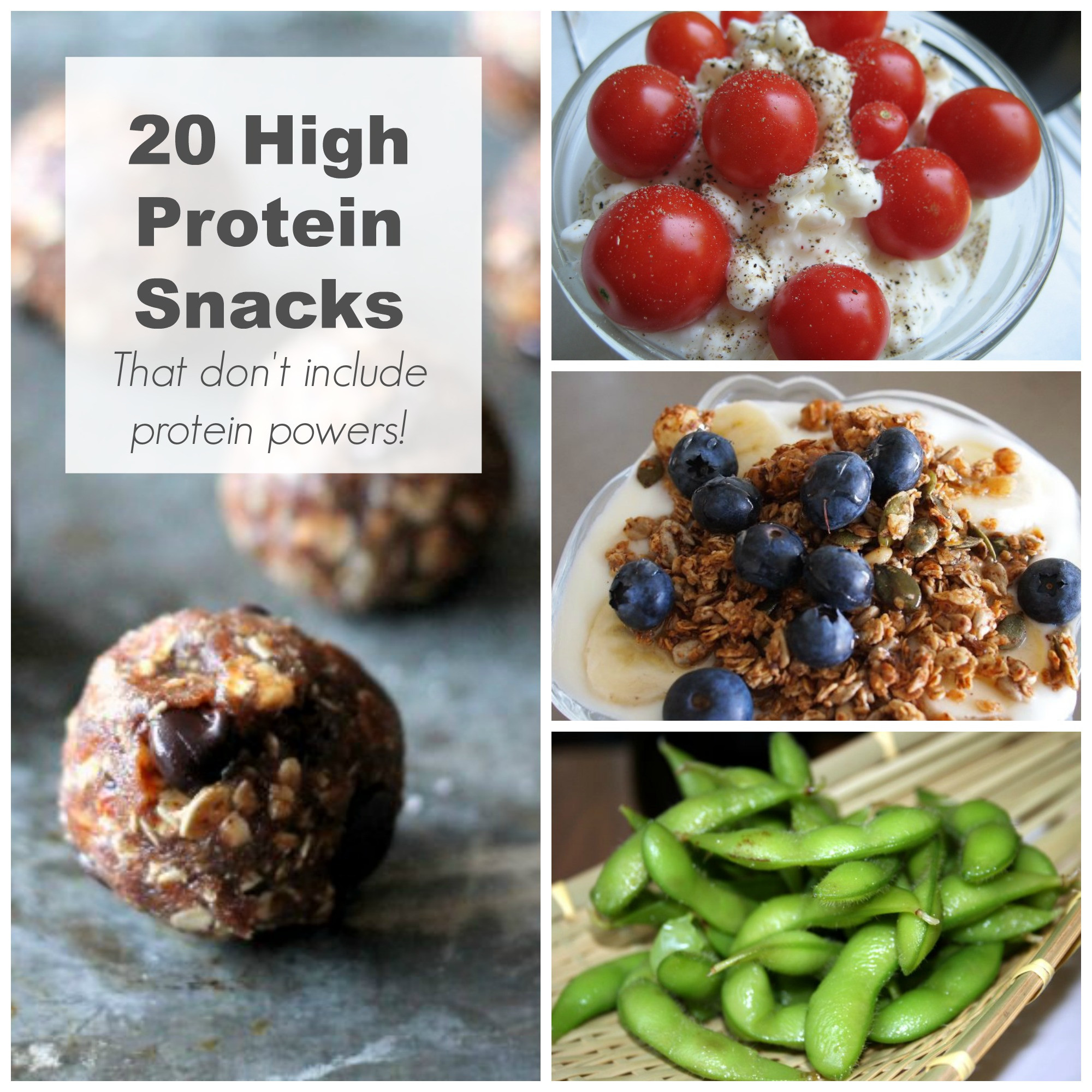 High Protein Snacks Recipes  20 High Protein Snack Ideas The Organized Mom
